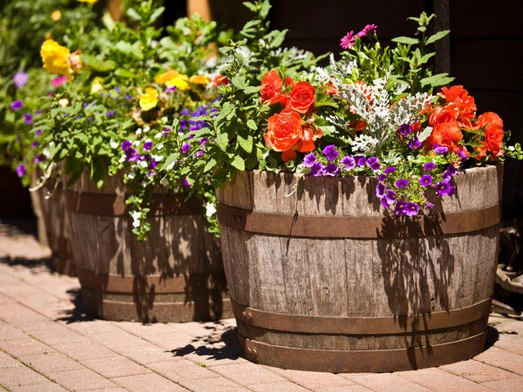 Rustic Charm with Wooden Barrel Planters